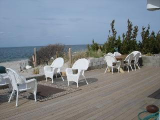 Beach House All Year, Wine tasting North Fork near Hampton Sleeps 12 The Diana - Bellport vacation rentals