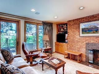 Comfortable 2 bedroom Condo in Aspen - Aspen vacation rentals