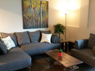 Clean central modern apartment - Calgary vacation rentals