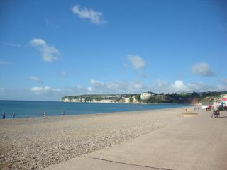 Lovely Condo with Internet Access and Dishwasher - Seaton vacation rentals