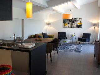 Luxury Furnished Apartments Aix en Pce with GARDEN - Meyreuil vacation rentals