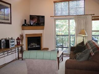 TLA12 Super Condo w/Wifi, Common Hot Tub, Mountain Views, Fireplace - Frisco vacation rentals
