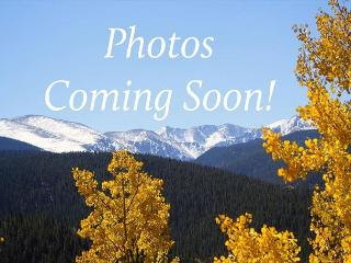 WH412 Great Condo w/Mountain Views, Fireplace, Common Hot Tub - Silverthorne vacation rentals