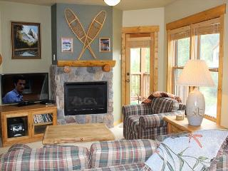 TF2619 Lovely Condo w/Fireplace, Wifi, Walk to Lifts, Common Hot Tubs - Keystone vacation rentals