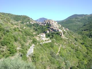 Nice 1 bedroom Apricale Condo with Cleaning Service - Apricale vacation rentals