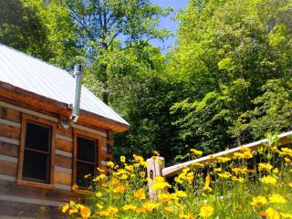 Deer Run:  Waterfront Log Cabin - Sparta vacation rentals