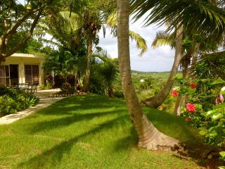 Romantic House with Garden and Telephone - Vieques vacation rentals