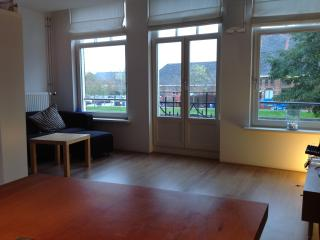 WESTERPARK APARTMENT - Amsterdam vacation rentals