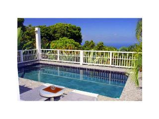 caribbean/nevis/romantic-villa - Basseterre vacation rentals