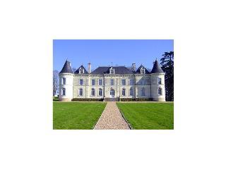 france/vendee-charente/chateau-de-lanternes - Vienne vacation rentals