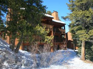 Four O'Clock - 1 bedroom condo - Breckenridge vacation rentals