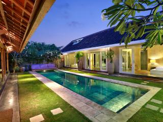 ☆ Rustic Charm with a Modern Twist - up to 6 ☆ - Seminyak vacation rentals