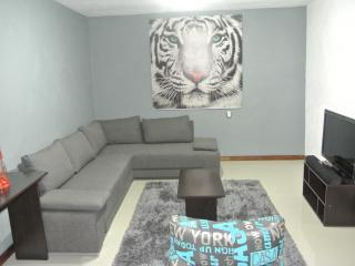 Modern fully furnished apartment, just 7 minutes walking distance of tourist attractions - Atotonilco vacation rentals