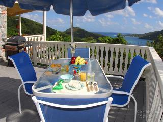 La Bella Villa - Saint John vacation rentals