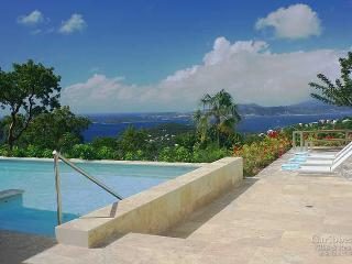 Gorgeous 5 bedroom Vacation Rental in Virgin Grand Estates - Virgin Grand Estates vacation rentals