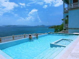 Gorgeous House with Internet Access and A/C - Great Cruz Bay vacation rentals