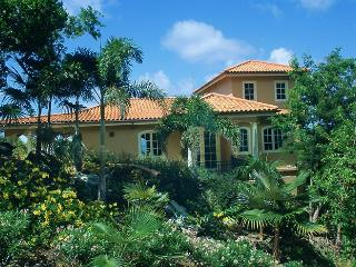 South Palm - Virgin Grand Estates vacation rentals