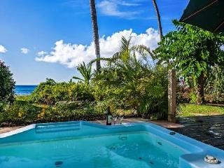 Beachfront Reeds House no5 - Luxury condo with beautiful dining terrace, spa pool & beach - Reeds Bay vacation rentals