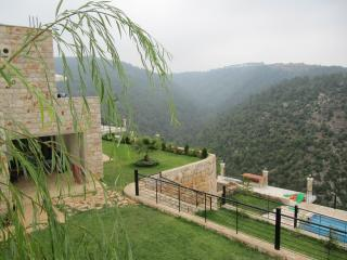 Mountain villa with swimming pool - Mazboud vacation rentals
