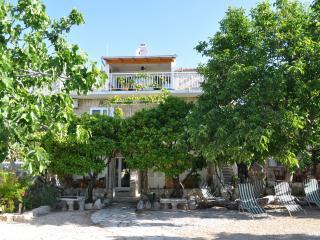 Villa Kaktus Orebic - Orebic vacation rentals