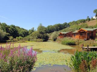 Beautiful House with Internet Access and Hot Tub - Buckland Brewer vacation rentals