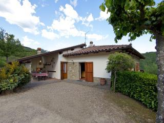 Appartamento IL FORNO - Pratovecchio vacation rentals