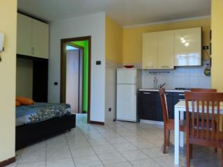 Comfortable 1 bedroom Pavia Apartment with Washing Machine - Pavia vacation rentals