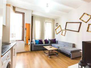 One Bedroom Apt Near Taksim Square - 234 - Istanbul vacation rentals