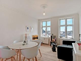Nice Copenhagen apartment close to the Central Station - Copenhagen vacation rentals