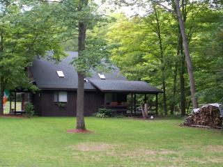 Quiet House in the woods near Ithaca, NY - Finger Lakes vacation rentals