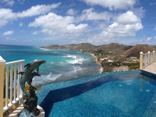 Villa Paradiso- LUXURY VILLA WITH KNIFE EDGE POOL - Saint Croix vacation rentals
