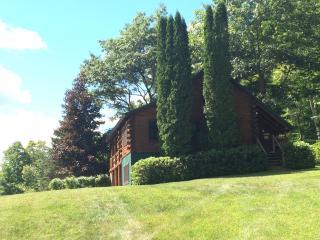 Brant Lake, NY log cabin - Brant Lake vacation rentals