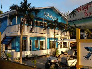 AquaVista Beachfront Suites San Pedro, Belize - San Pedro vacation rentals