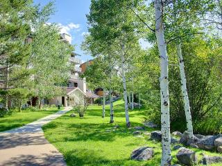 Real Deal /Walk/ski To Slopes/village - Northwest Colorado vacation rentals