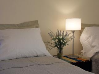 Large and confortable apartment excellent location - Central Argentina vacation rentals