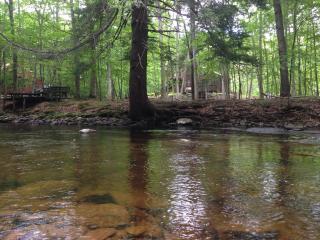 Gateaway Right On The Creek: Fireplace, Jacuzzi. Ski, Snow tube, Swim, Hot Tub - Bushkill vacation rentals