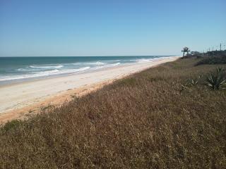Ocean Get Away! Steps To Ocean and Pool. - Ormond Beach vacation rentals
