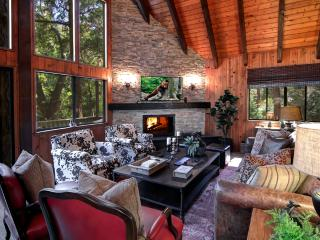 TREETOP LODGE Luxury 10 minute walk to Village - Lake Arrowhead vacation rentals