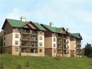 Wyndham  Smoky Mountains - 1 Bedroom 1 Bath - Sevierville vacation rentals