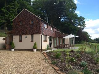 Cozy 2 bedroom Cottage in Shere - Shere vacation rentals