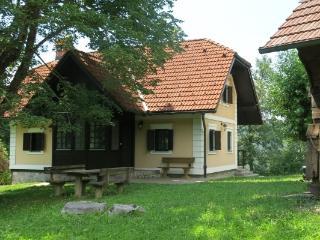 Two country houses near Ljubljana - Zuzemberk vacation rentals