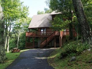 Ski Acres Place a 3 level log cabin with great view on Appalachian Ski Mtn. - Fleetwood vacation rentals