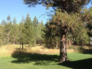 Cute, comfortable, nicely updated family home by the Tahoe Keys - South Lake Tahoe vacation rentals