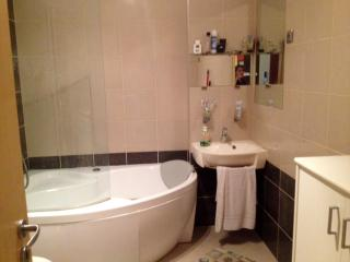 Luxury Home in the Heart of Budapest - Budapest vacation rentals