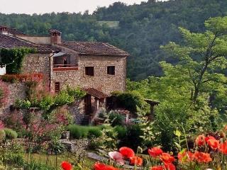 Authentic  3BR farmhouse - Castellina In Chianti vacation rentals