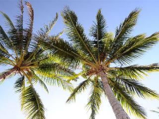 Ocean's Edge Luxury Beachfront House - Hamilton Island vacation rentals