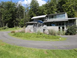 Willow House - Architect designed (14 acres, pond) - Phoenicia vacation rentals