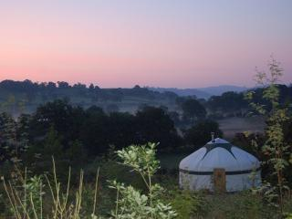 Romantic 1 bedroom Dolanog Yurt with Deck - Dolanog vacation rentals