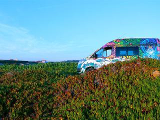 The Getaway Van - Matosinhos vacation rentals