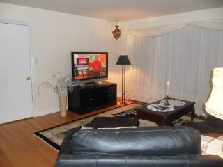 Comfortable Chicago Condo (2Br-1Ba) - Chicago vacation rentals